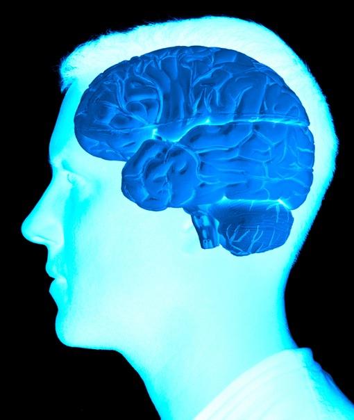 dementia alzheimer s disease and person essay